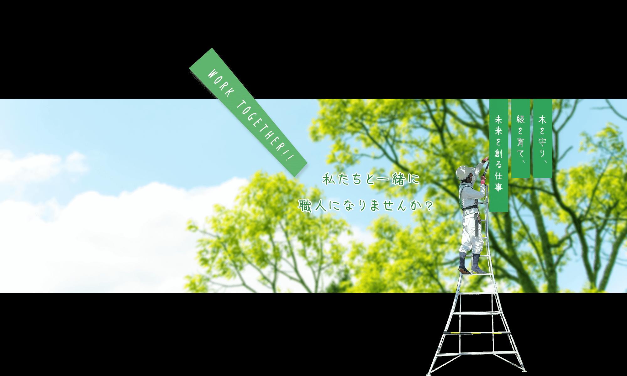 木を守り、緑を育て、未来を創る仕事。私たちと一緒に職人になりませんか?